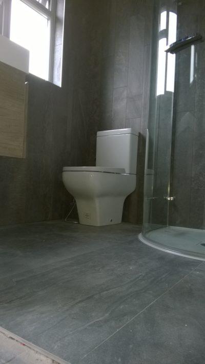 dark walls bathroom