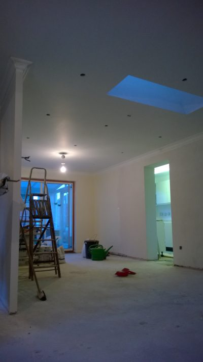 ceiling & wall painting